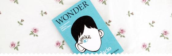 wonder_header